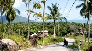 Baah Tai, Koh Phangan